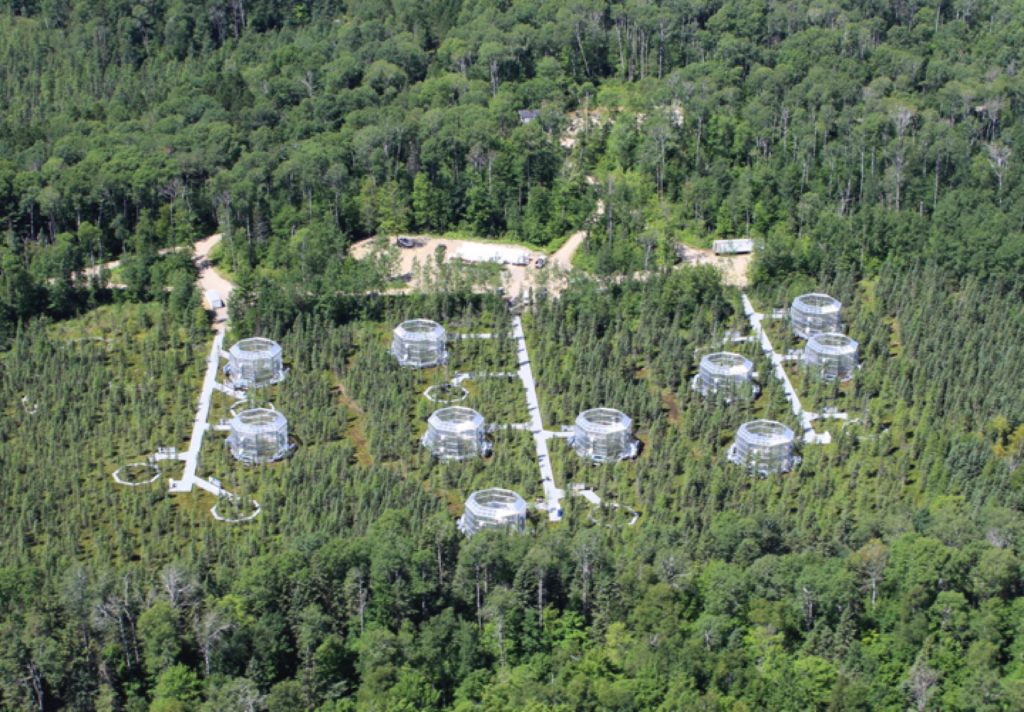Aerial view of Marcell Experimental Forest